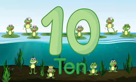 Ten frog at the pond illustration