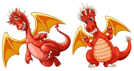 Red dragon with wings illustration