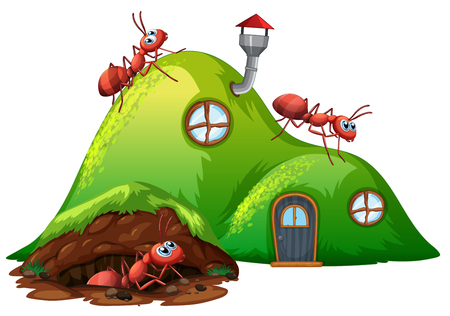 Underground hole ant home illustration