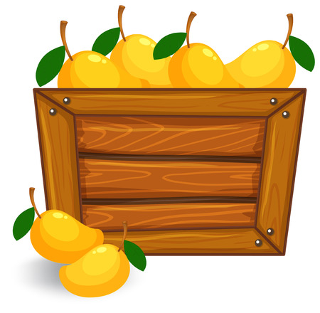 Mango on wooden banner illustration  イラスト・ベクター素材