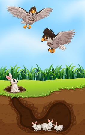 An eagle hunting rabbit illustration