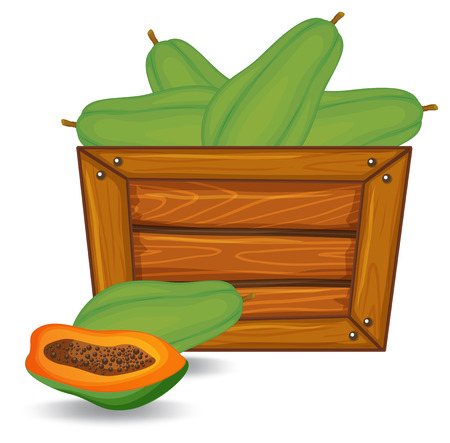 Papaya on wooden banner illustration