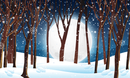 Winter forest at night scene illustration  イラスト・ベクター素材