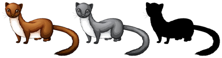 Set of weasel character illustration Illustration