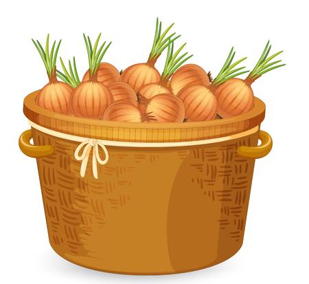 A basket of onion illustration