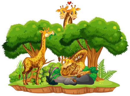 Giraffe on isolated nature landscape illustration