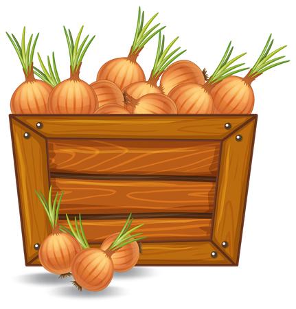 Onion on wooden template illustration