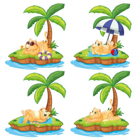 Conjunto de gato perezoso en la ilustración de la isla