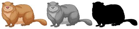A set of beaver  illustration