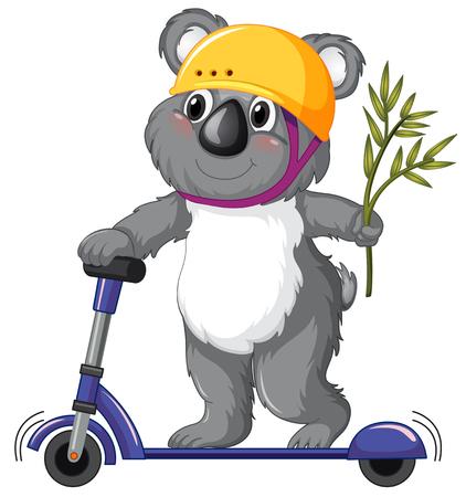 A koala playing kick scooter illustration