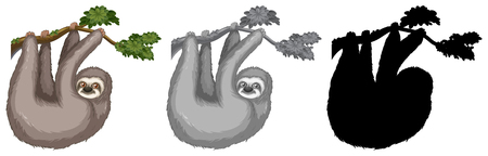 Set of sloth hanging on tree branch illustration