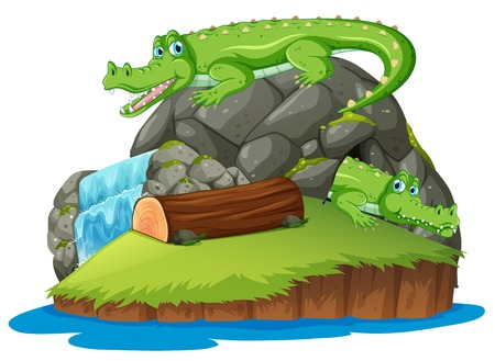 Crocodile on the isolated island illustration