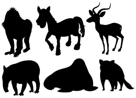 Set of illustration exotic animals illustration