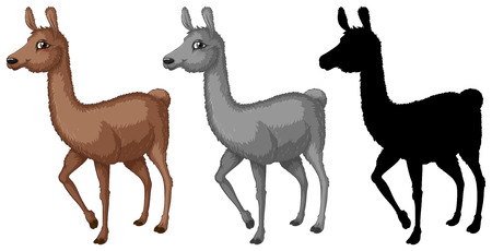 Set of alpaca character illustration