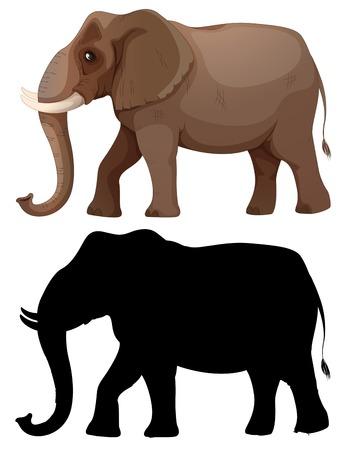 Set of elephant character illustration 写真素材 - 121752317