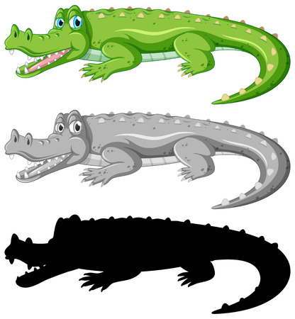 Set of crocodile character illustration