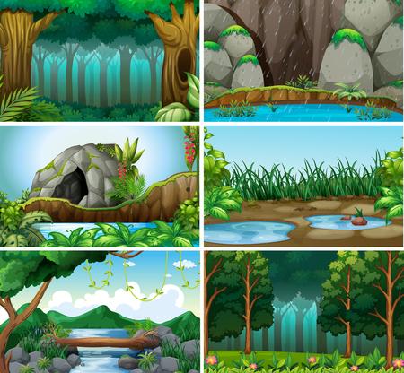 Set of forest background illustration
