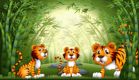 Group of tiger at bamboo forest illustration