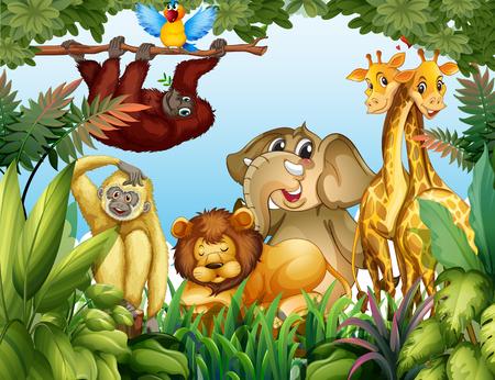 Wild animal in jungle illustration Illustration