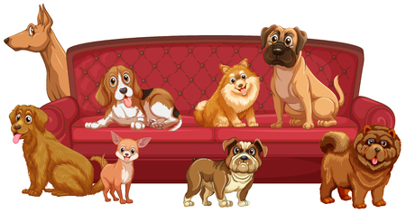Different dog breeds at sofa illustration Illustration