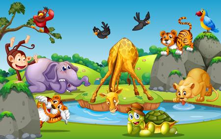Wild animal in forest illustration