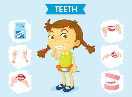 Scientific medical illustration of teeth care poster illustration