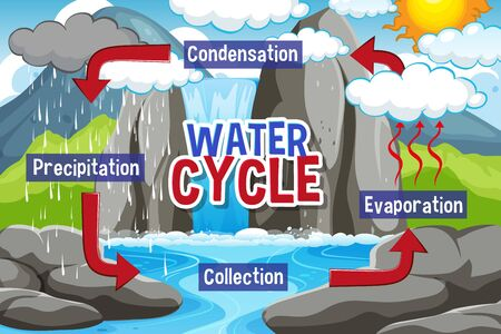 Water cycle process on Earth - Scientific illustration Vectores