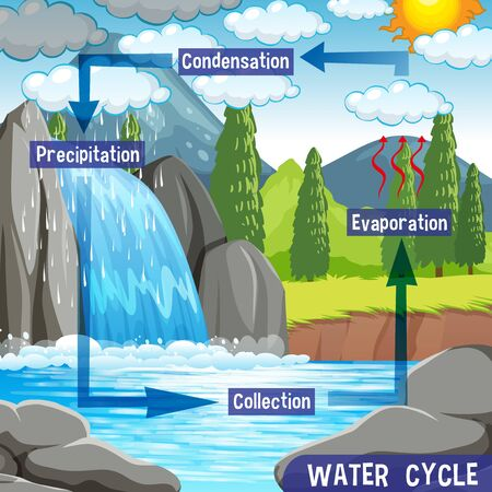 Water cycle process on Earth - Scientific illustration 向量圖像