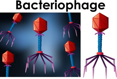 Close up isolated object of virus Bacteriophage illustration