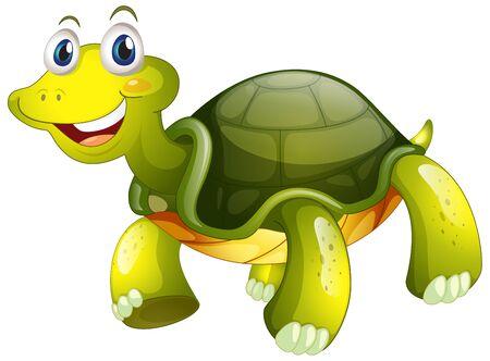Cute tortoise on white Ilustrace