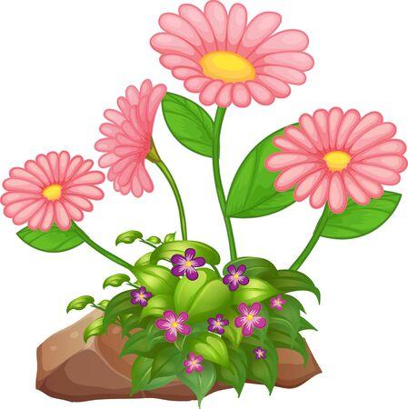 Flowers and rocks on white background illustration