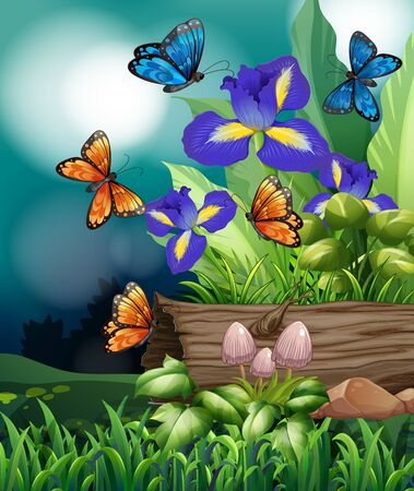 Nature scene with butterfly and iris flowers