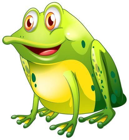 Green frog sitting on white background illustration Ilustrace