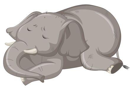 Sick elephant on white background illustration  イラスト・ベクター素材