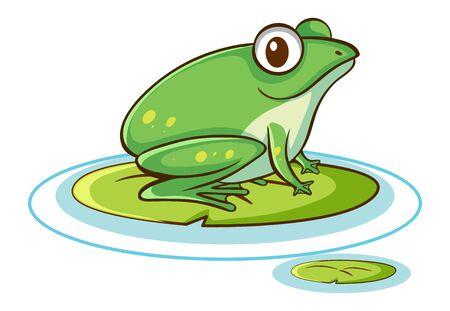 Green frog on white background illustration