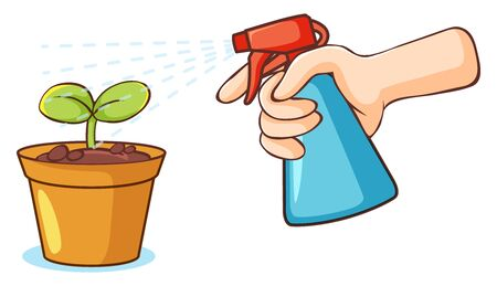 Plant and spray bottle on white background illustration