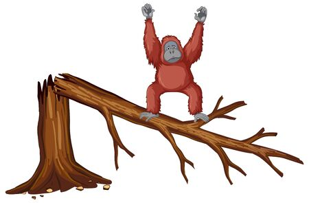 Monkey on broken branch illustration