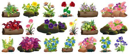 Large set of colorful flowers on rocks and wood illustration Ilustracja