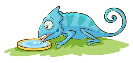 Chameleon licking water on white background illustration