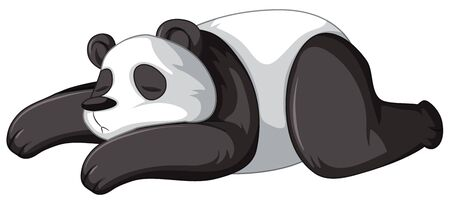 Panda sleeping on white background illustration
