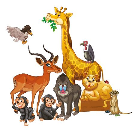 Many wild animals on white background illustration