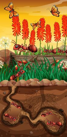 Nature scene with butterflies and ants in garden illustration Иллюстрация