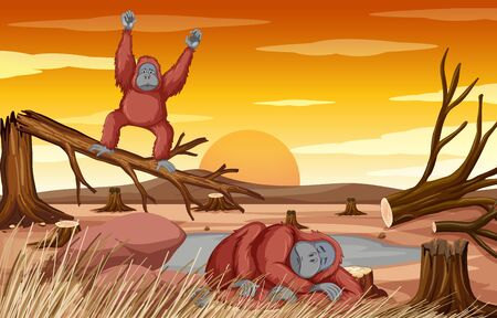 Deforestation scene with two chimpanzee dying illustration