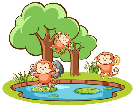 Isolated picture of monkeys in garden illustration
