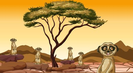 Scene with meerkats in the field illustration 일러스트