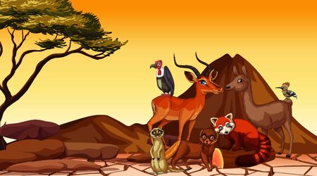Scene with many animals in the field illustration 일러스트