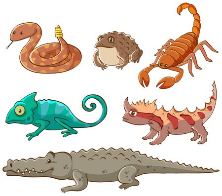 Isolated picture of poisonous animals illustration
