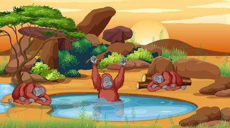 Scene with chimpanzees in the pond illustration
