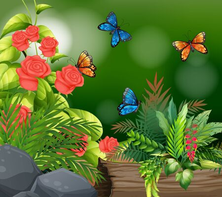 Background scene with roses and butterflies illustration