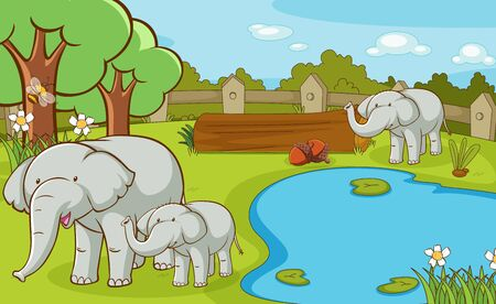 Scene with elephants at the zoo illustration 일러스트